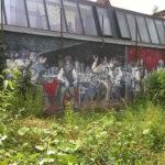 juin-2016-etet-des-fresques-jardin-rue-de-Scheut.-512x342-web