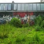 juin-2016-rue-de-Scheut-jardin-342-web